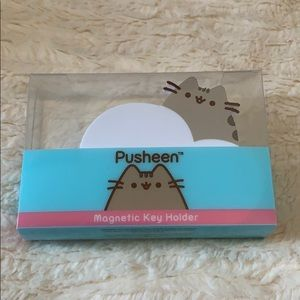 Pusheen magnetic key holder